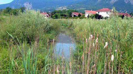 Image Du bon état écologique des cours d'eau